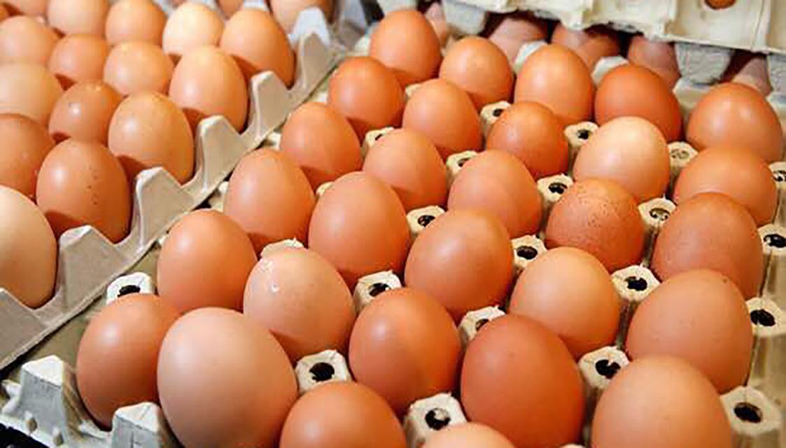 Kande Poultary farm eggs